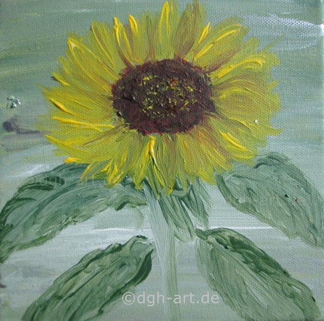 Erste Sonnenblume