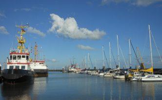 Beschaulicher Hafen an der Nordseeküste in der Abendsonne, Segelboote aufgereiht und Nutzschiffe im Hafen. Wilhelmshaven, Nationalpark Wattenmeer,