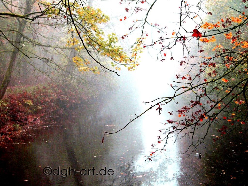 Herbstimpression 5