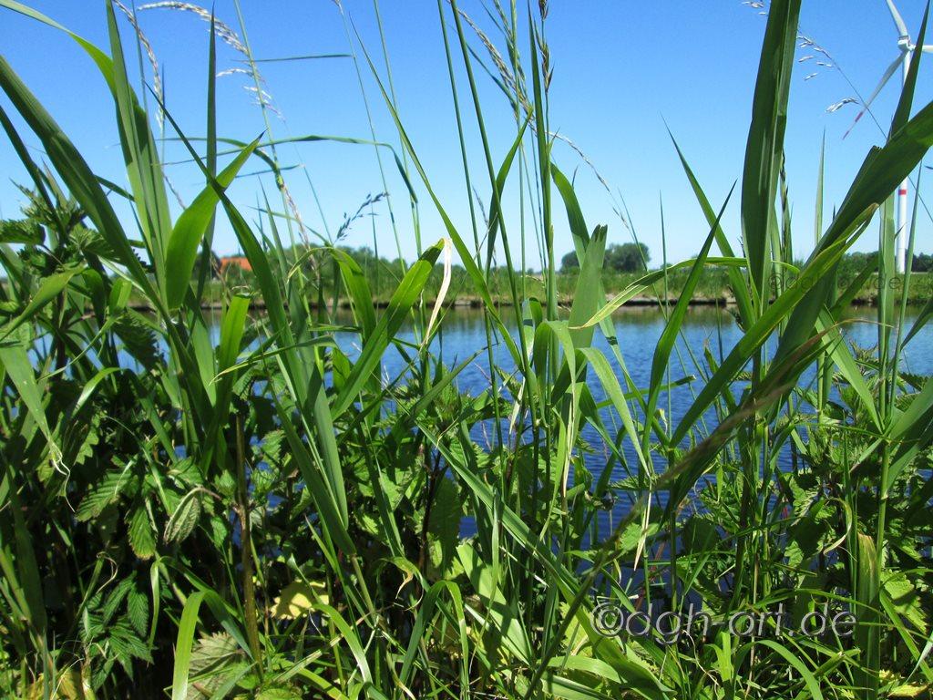 Sommertag am Kanal