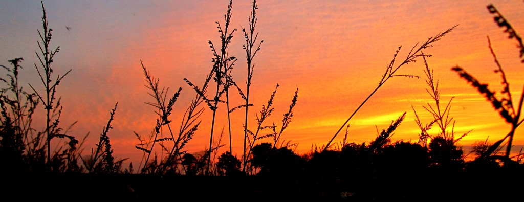 Sonnenuntergang in Friesland